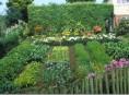imagen Plantas para un jardín ecológico