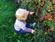 imagen Residuos de herbicidas y niños en casa