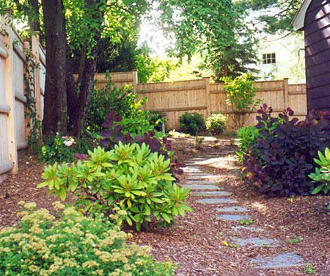 usos de los arbustos