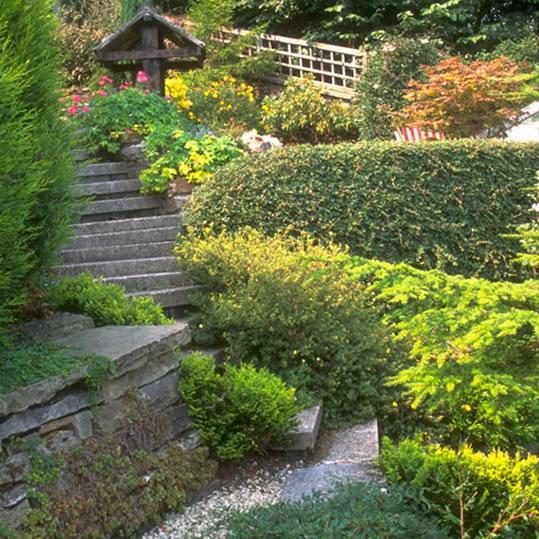 Modern Or Rustic Front Landscape Design: Ideas Para Jardines Modernos