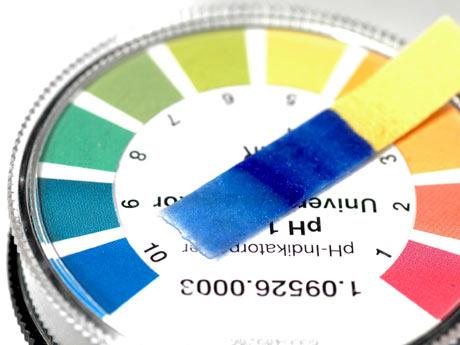 aprende a corregir el pH del suelo