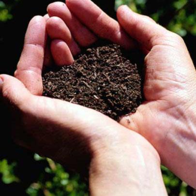 El suelo y sus propiedades 1