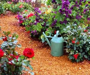 Acolchados y recubrimientos de la tierra for Tierra para jardin