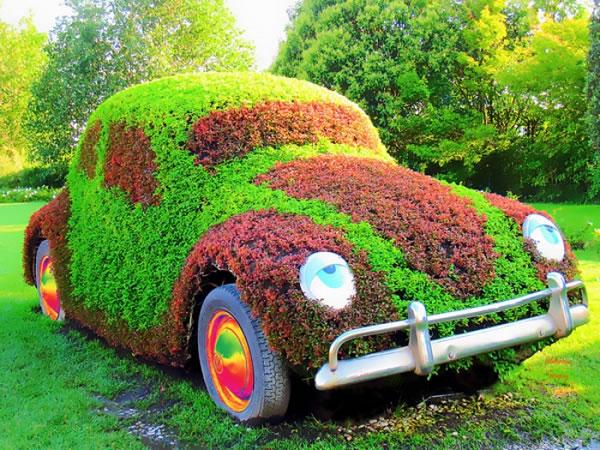 Qu Es El Arte Topiario Gu A De Jardiner A