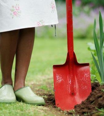 Usar cal y yeso en el jardín