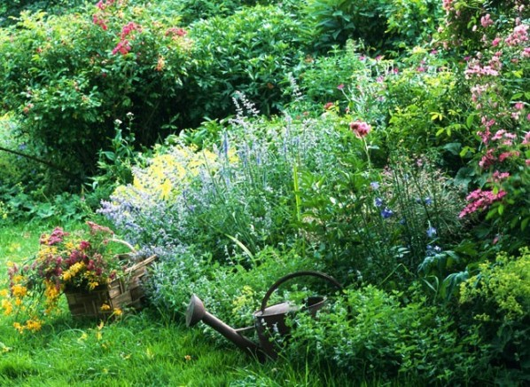 Limpieza y poda del jardín tras las vacaciones 1