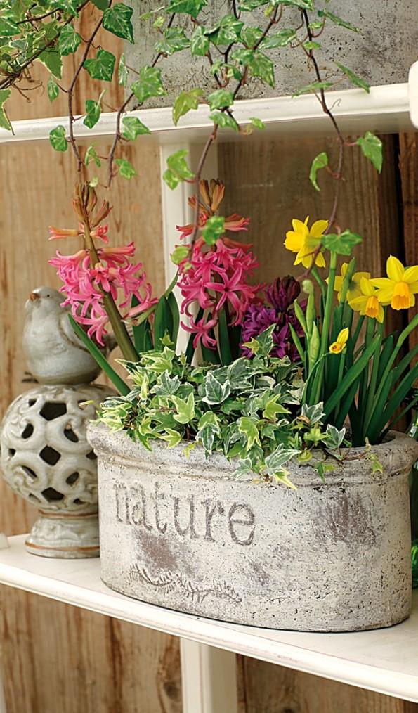 Las jardineras de primavera se preparan en otoño 4