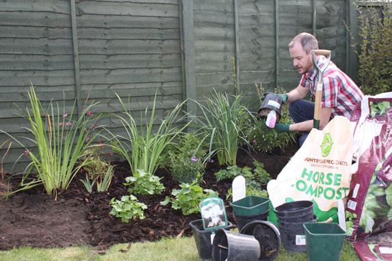 Mantenimiento de herbáceas perennes