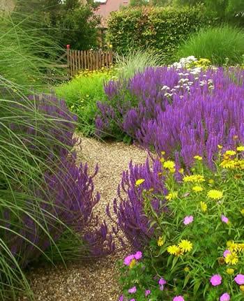 Jardín orgánico 2