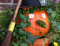 imagen Arreglos para el jardín en halloween