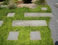 imagen Plantas tapizantes para zonas de paso