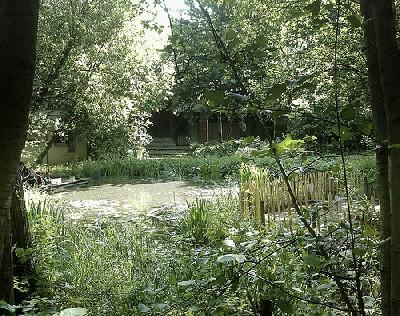 Jardines salvajes en París 2