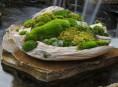 imagen Jardines de piedra y musgo