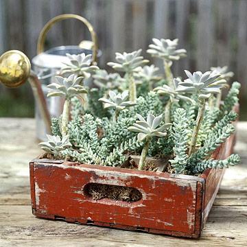 Macetas y jardineras divinas 2