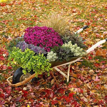 Macetas y jardineras divinas 6
