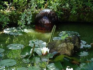 mantenimiento del estanque 1