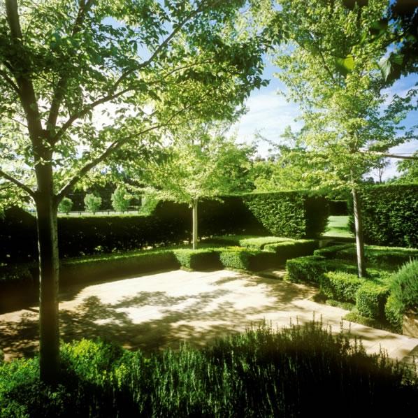 Simetría en el jardín 4