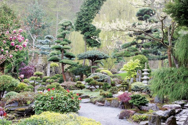 Un jard n japon s for Jardin japones