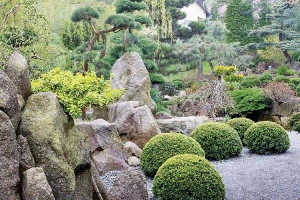 Un jard n japon s - Jardin japones pequeno ...