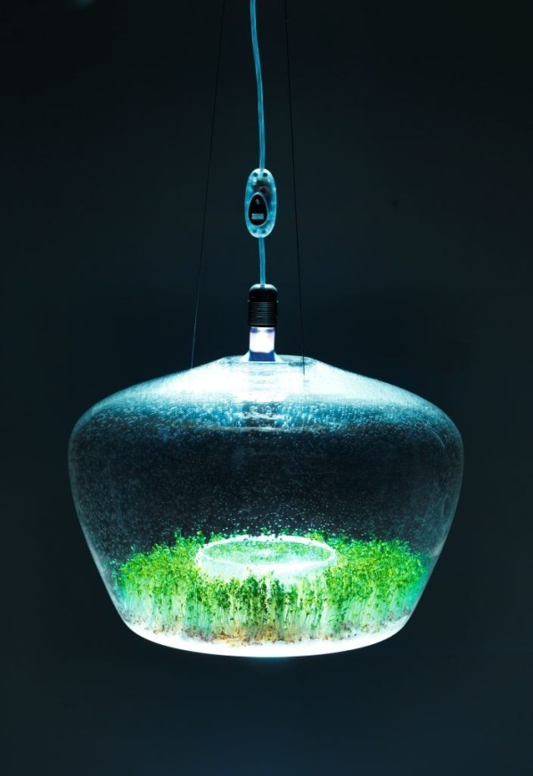 Lámpara invernadero 1