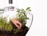 imagen Lámpara invernadero: hierbas frescas en la cocina