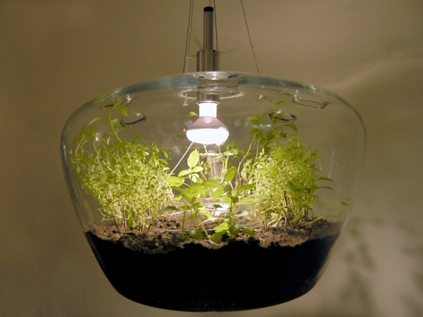 Lámpara invernadero 4