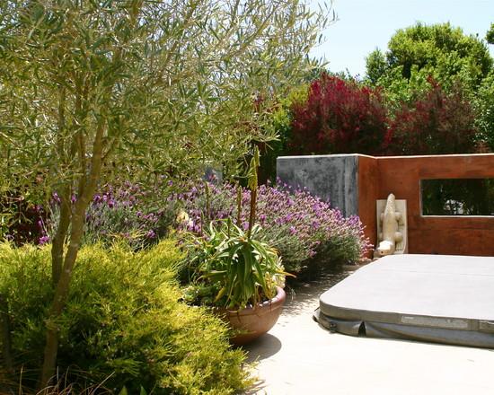 Un jardín mediterráneo en California 1