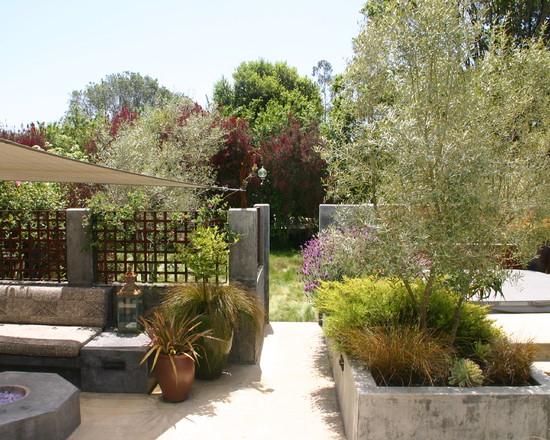 Un jardín mediterráneo en California 3