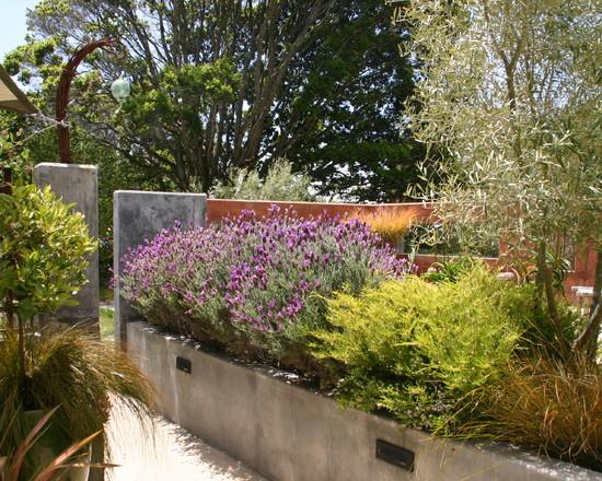 Un jardín mediterráneo en California 4