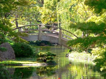 El jard n japon s for Cascadas jardin zen