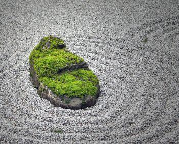 jardín japonés 2