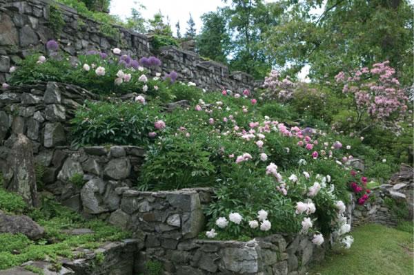 Innisfree jardín 5