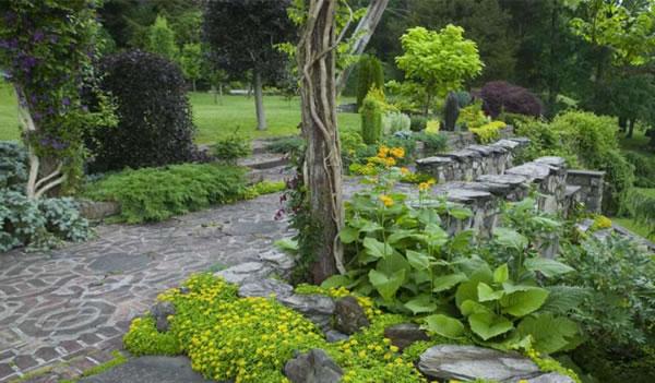 Innisfree jardín 8