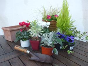 Jardinerias de invierno 1