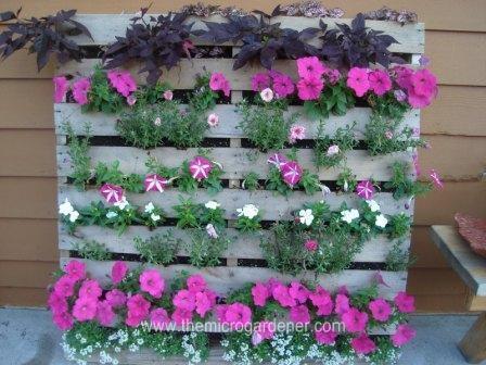 Utiliza palés en tu jardín 1