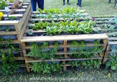 Utiliza palés en tu jardín 2