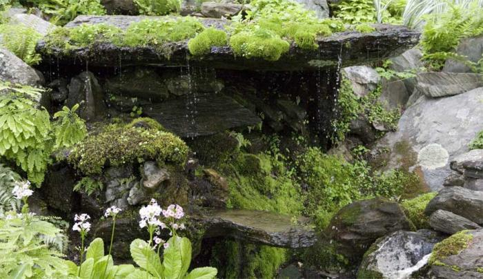 Innisfree jardín 7
