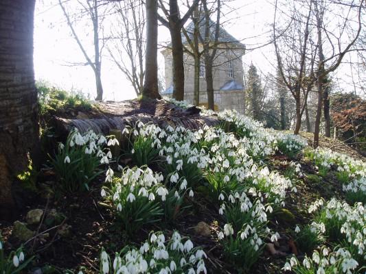 Jardín Painswick Rococo 8