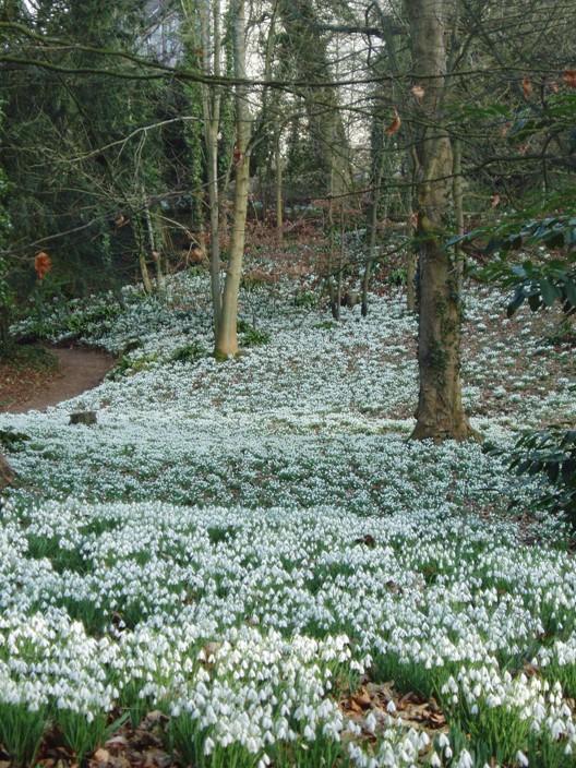 Jardín Painswick Rococo 9