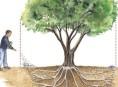 imagen Cómo abonar los árboles