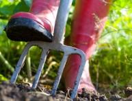 imagen Correctores para mejorar el suelo