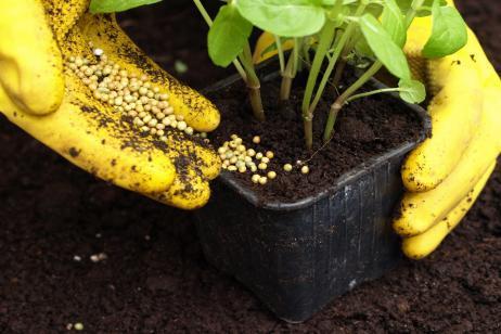 Fertilizantes jardín