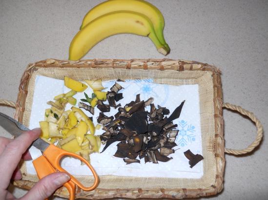 Fertilizante con plátano 2
