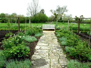 Caminos y senderos en el jardín1