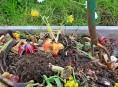 imagen Compost: qué y qué no usar para prepararlo