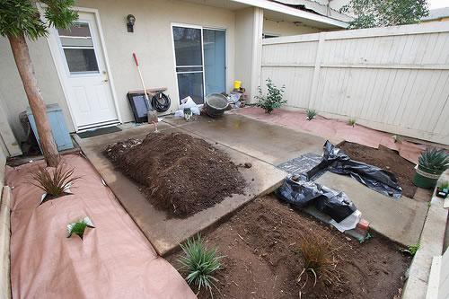 Controlar las malas hierbas