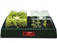 imagen Mini-invernaderos y esteras de calefacción
