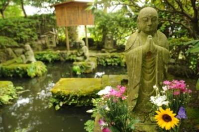 Diseña tu jardin Zen