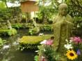imagen Diseña tu propio jardín Zen