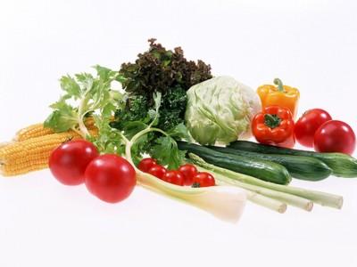 Agricultura ecológica 2